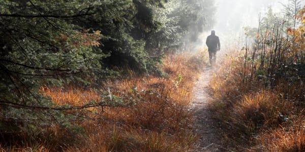 Jesus is the way – the narrow way